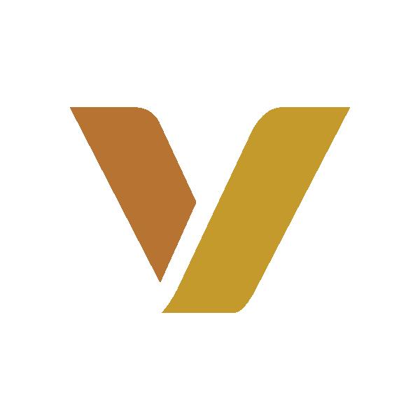 vaski_logo