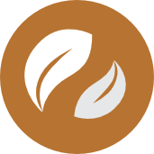 Energy efficiency icon