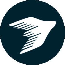 Fast process icon